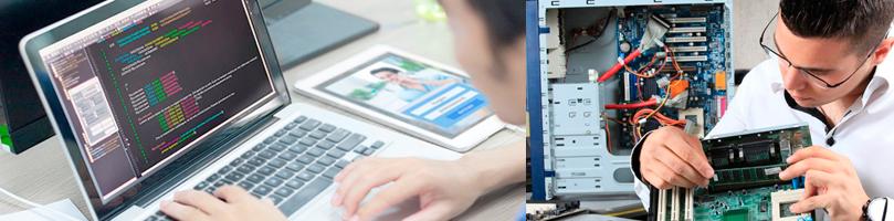 TNS en Computación e Informática