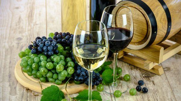 CHARLA EN PORTUGUÉS: «Proceso del Vino, desde su fabricación a su comercialización» / miércoles 14 octubre / 09:30 a 11:00 hrs.