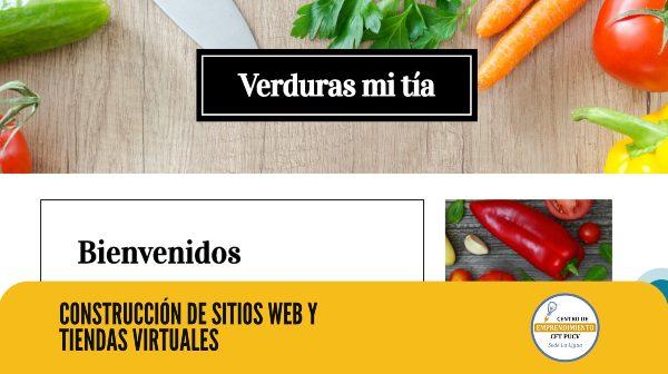 Egresados de CFT PUCV Sede La Ligua desarrollaron sitios web y tiendas virtuales para emprendedores