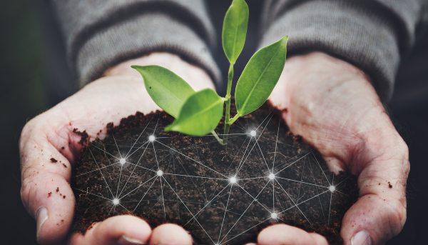 TALLER: Regulación Medioambiental para la ciudadanía / martes 26 octubre / 17:00 hrs.